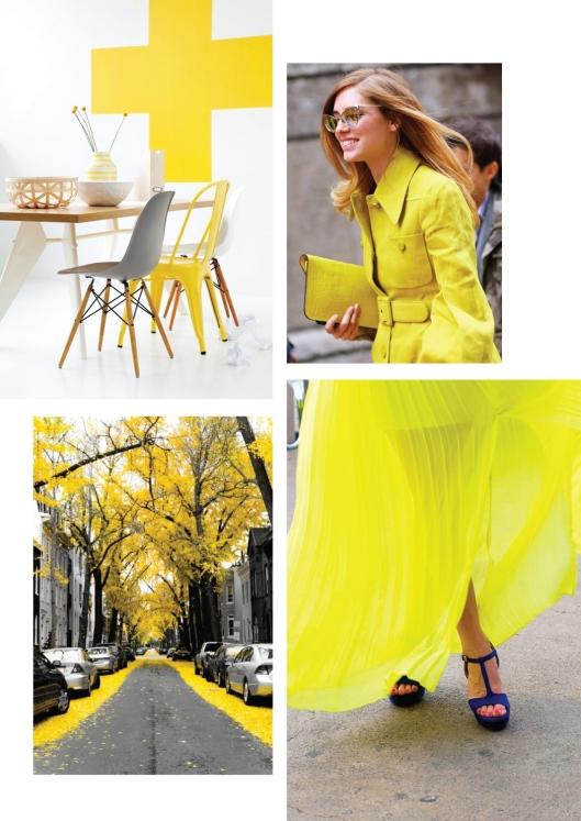 yellow pics1